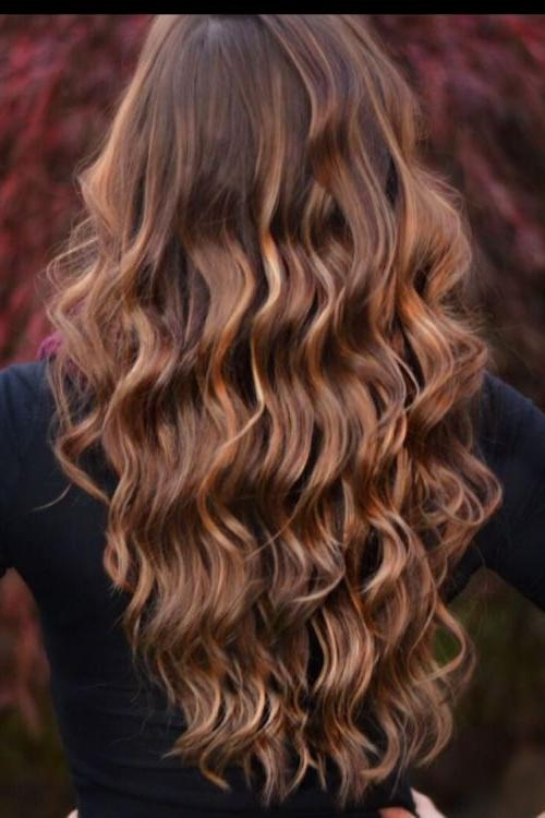 Photo Gallery Of Highlights For Long Hair Viewing 15 Of 15 Photos