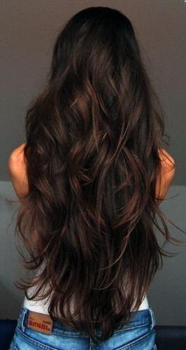 A Fabulous Long Black And Brown Hairstyle Ideas With Highlights Pertaining To Highlights For Long Hair (View 5 of 15)