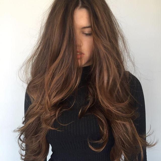 Best 20+ Long Brown Hair Ideas On Pinterest | Beautiful Brown Hair In Long Hairstyles Brown (View 4 of 15)