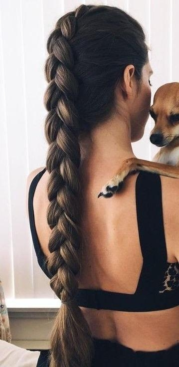 Best 20+ Thick Braid Ideas On Pinterest | Braids Tutorial Easy In Braids For Long Thick Hair (View 2 of 15)