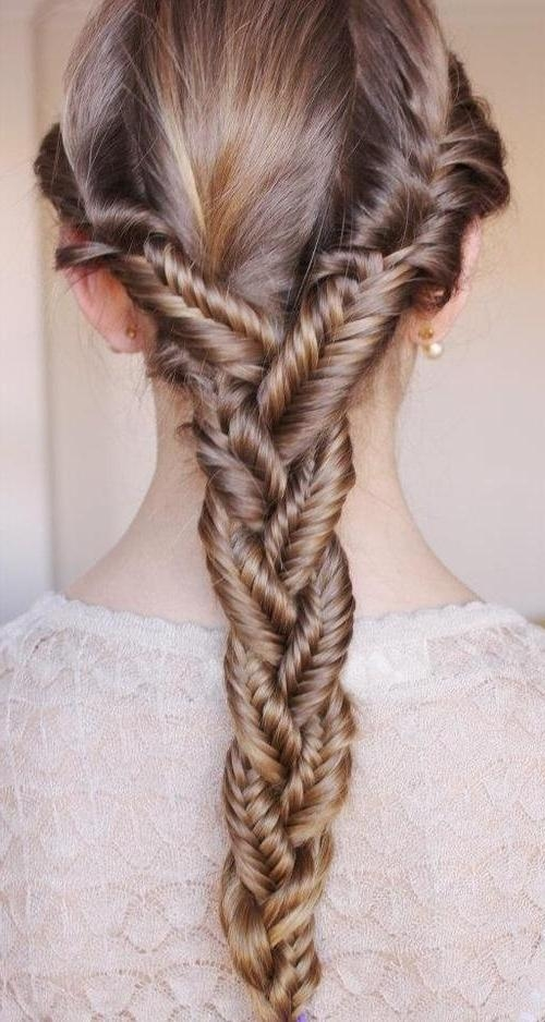 Braids For Thick Hair Throughout Braids For Long Thick Hair (View 12 of 15)