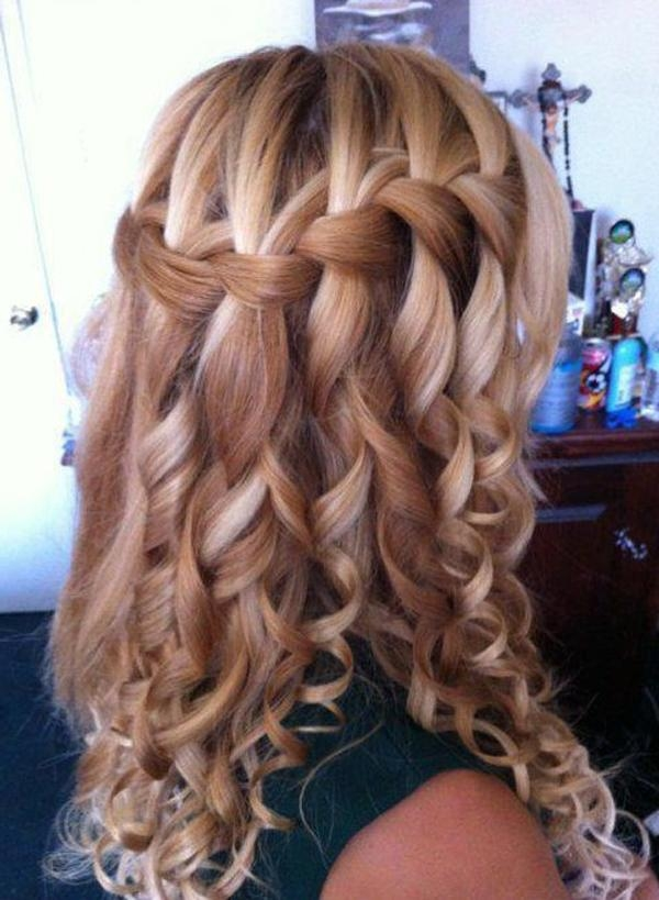 Long Hair Styles With Braids Throughout Long Hairstyles Plaits (View 13 of 15)