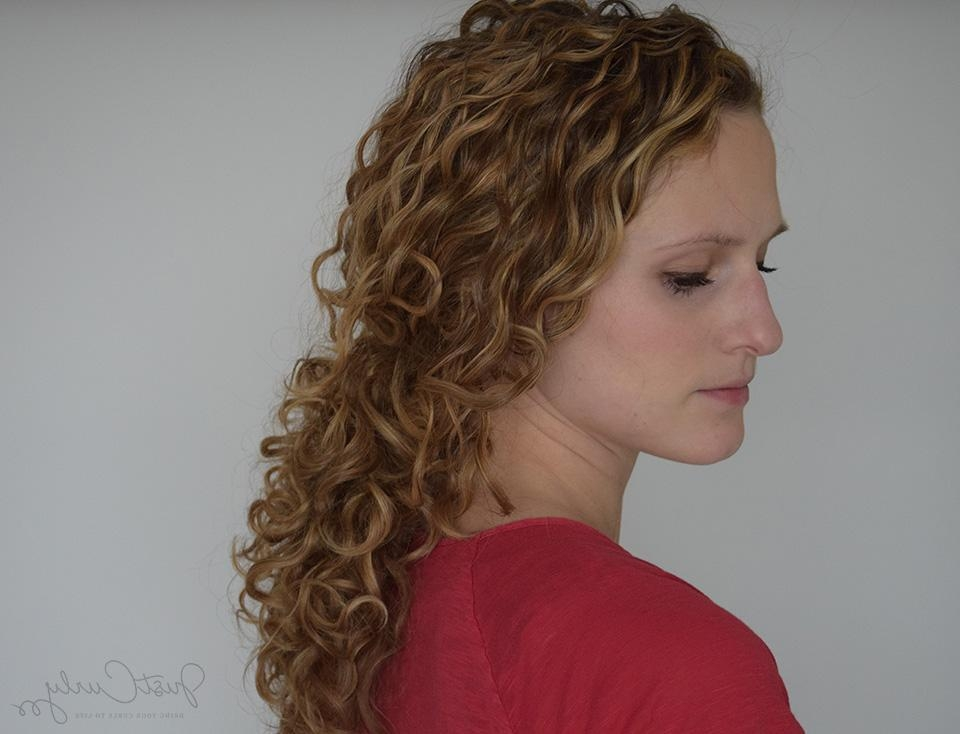 Pulling Back Curly Hair Without Destroying Its Curls Pattern Throughout Long Hairstyles Pulled Back (View 15 of 15)