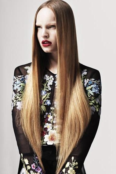 Straight Hairstyle Benefits For Long Hairstyles Down Straight (View 11 of 15)