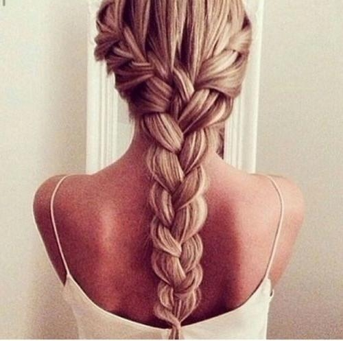 Thick Hair Braiding Archives – Best Haircut Style With Braids For Long Thick Hair (View 15 of 15)
