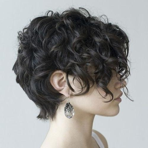 12 Best Short Curly Hair Images On Pinterest | Hairstyles, Short Intended For Short Curly Haircuts Tumblr (View 3 of 15)