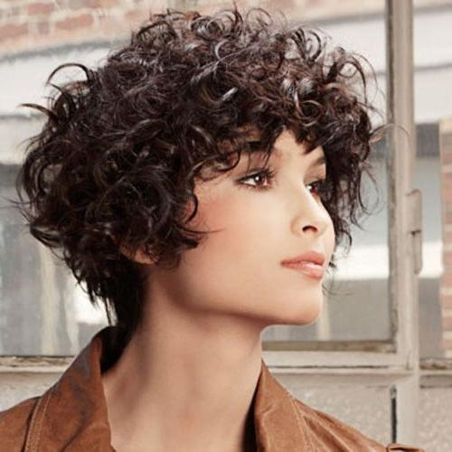 826 Best Curly Hair For Round Face Images On Pinterest | Hairstyle Within Trendy Short Curly Hairstyles (View 7 of 15)
