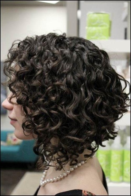 2018 Inverted Bob For Curly Hair Within Get An Inverted Bob Haircut For Curly Hair (View 2 of 15)