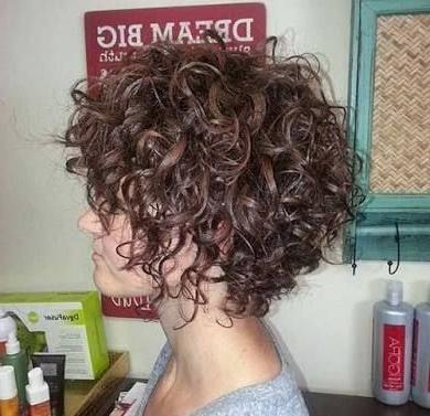 Best 25+ Curly Inverted Bob Ideas On Pinterest (View 2 of 15)