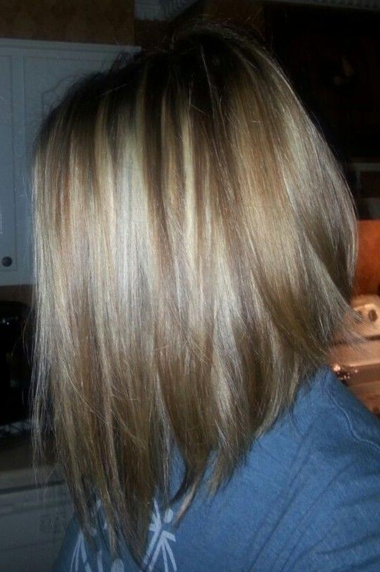 Best 25+ Medium Inverted Bob Ideas On Pinterest (View 3 of 15)