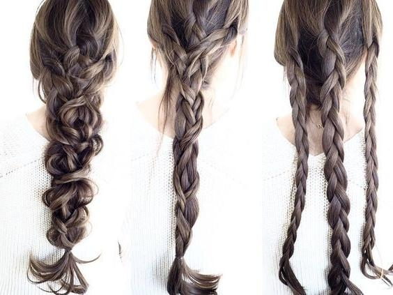 Photo Gallery of Braids Hairstyles For Long Thick Hair (Viewing 7 of ...