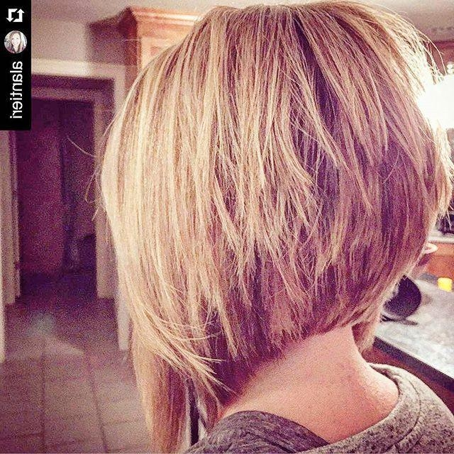 Best 25+ Stacked Bob Long Ideas On Pinterest | Longer Stacked Bob For Short In Back Long In Front Hairstyles (View 9 of 15)