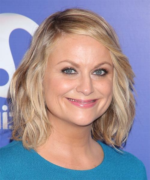 Celebrity Hairstyles Regarding Fashionable Amy Poehler Bob Hairstyles (View 11 of 15)