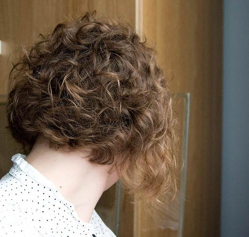 Curly Inverted Bob Hairstyle Pictures – New Hairstyles, Haircuts In Well Liked Curly Inverted Bob Hairstyles (View 10 of 15)