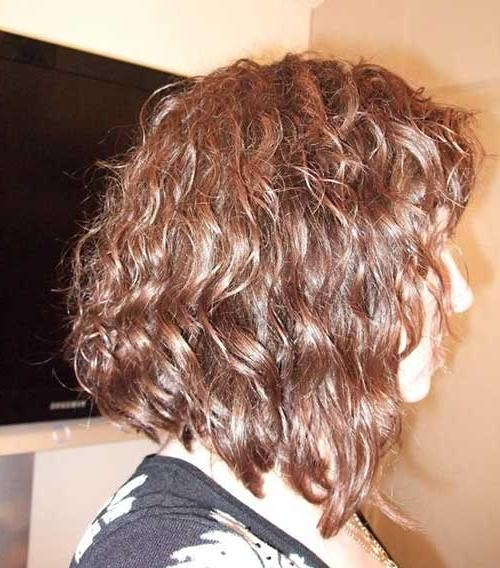 Famous Inverted Bob For Curly Hair Pertaining To Curly Inverted Bob (View 9 of 15)