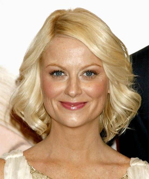 Fashionable Amy Poehler Bob Hairstyles For 33 Best Short Hair Images On Pinterest (View 12 of 15)