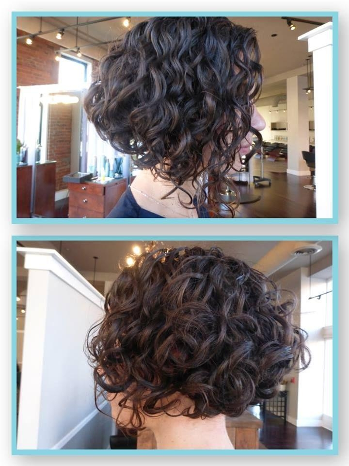 Long Curly Bob Intended For Most Popular Inverted Bob Hairstyles For Curly Hair (View 5 of 15)