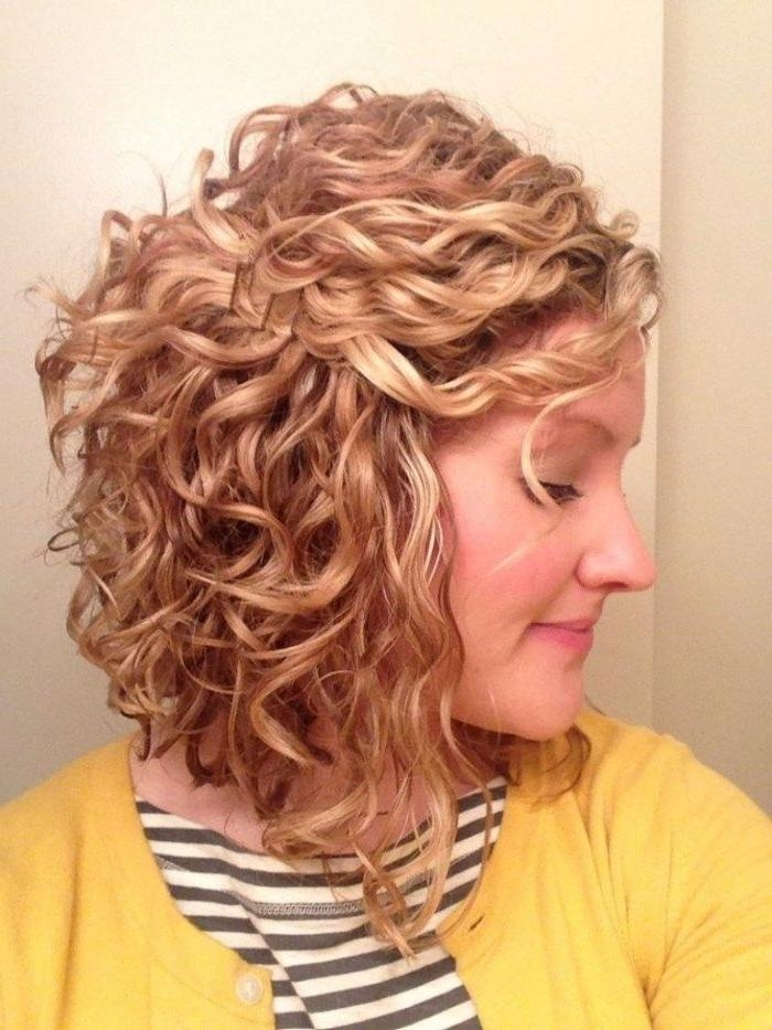 Long Curly Bob Regarding Fashionable Inverted Bob For Curly Hair (View 10 of 15)