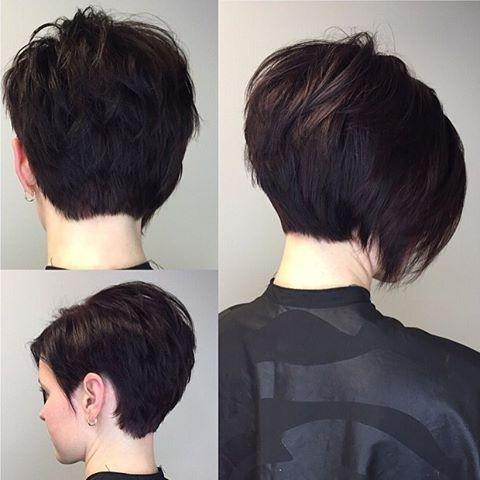 Recent Short Asymmetrical Bob Hairstyles Throughout Best 25+ Short Asymmetrical Hairstyles Ideas On Pinterest (View 12 of 15)