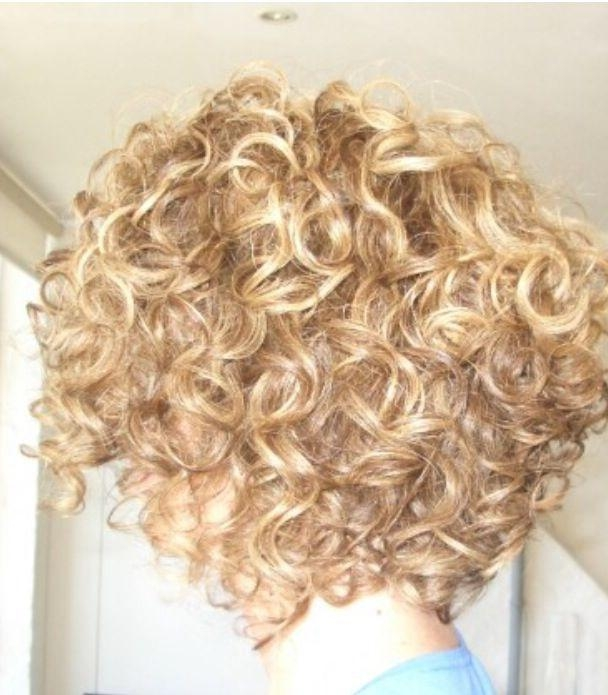 The 25+ Best Curly Inverted Bob Ideas On Pinterest (View 13 of 15)