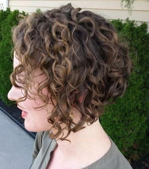 The 25+ Best Curly Inverted Bob Ideas On Pinterest (View 12 of 15)
