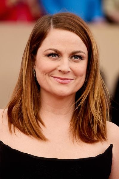 Widely Used Amy Poehler Bob Hairstyles Pertaining To Amy Poehler Mid Length Bob – Hair Lookbook – Stylebistro (View 15 of 15)