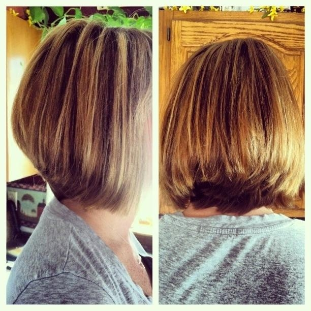 2017 Long Bob Hairstyles Back View In Simple Natural Look – The Layered Bob Haircut For Thick Hair (View 9 of 15)