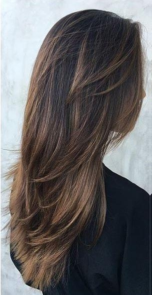 2017 Long Hairstyles Brunette Layers With Best 25+ Brunette Long Layers Ideas On Pinterest | Long Length (View 1 of 15)