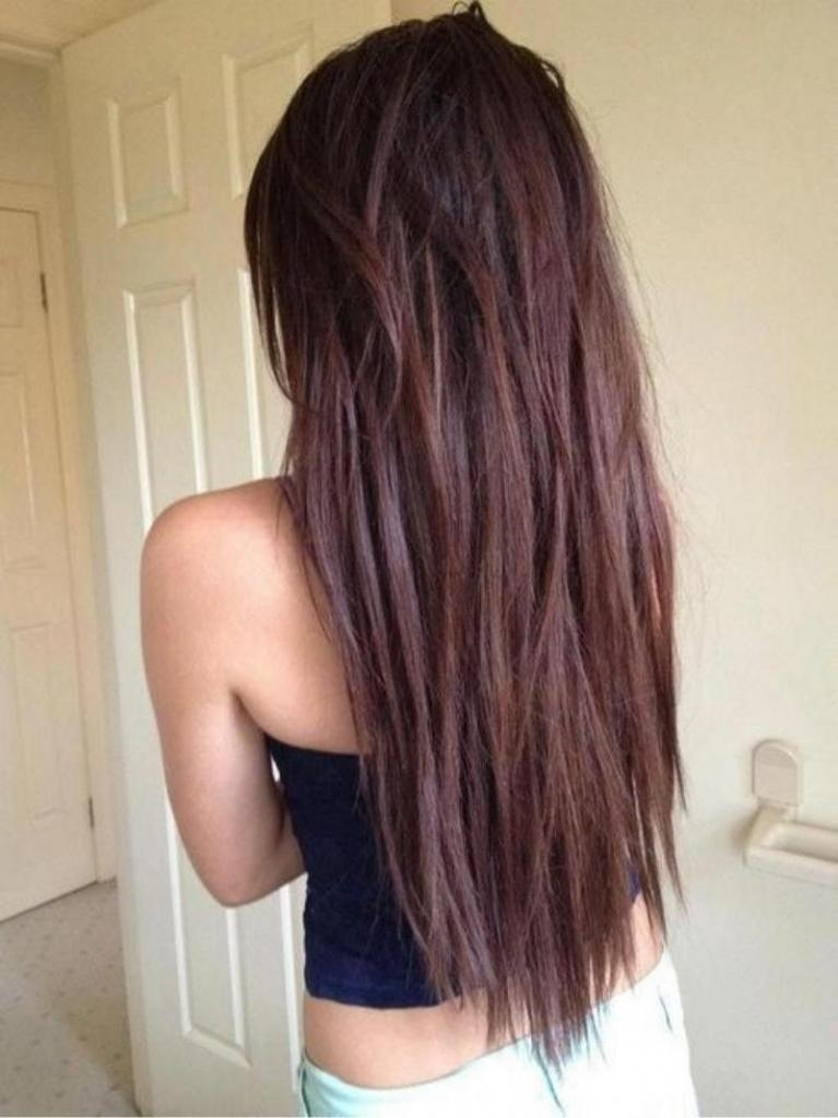 Best And Newest Long Haircuts From The Back Regarding Back View Of Long Layered Haircuts Layered Long Hairstyles Back (View 5 of 15)