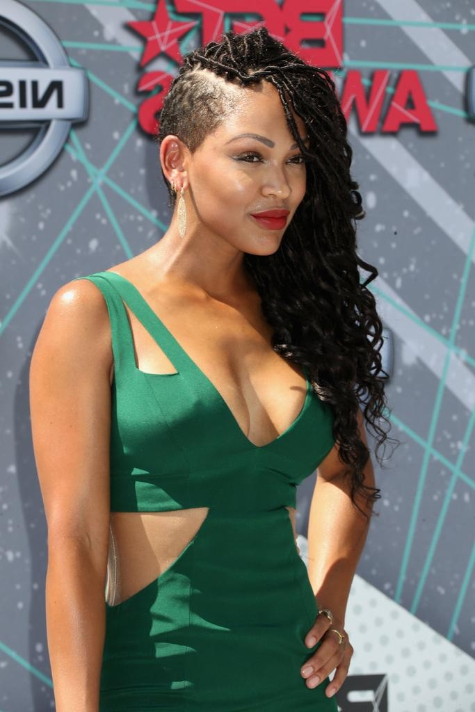 Most Up To Date Meagan Good Long Hairstyles Intended For Meagan Good Long Braided Hairstyle – Hair Lookbook – Stylebistro (View 13 of 15)