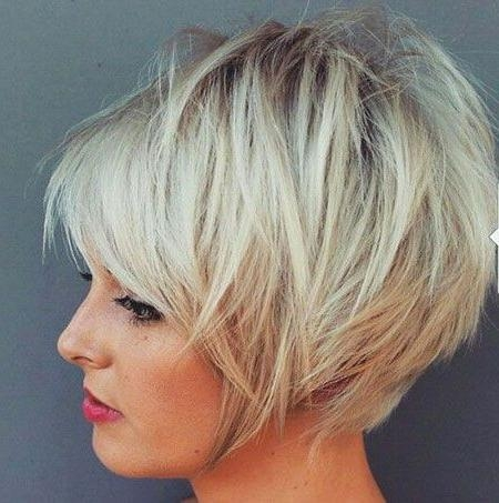 Pixie Bob (View 11 of 15)