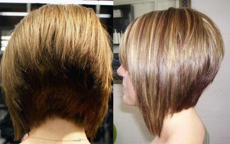 Trendy Stacked Bob Hairstyles Back View In Long Bob Hairstyles Back View – Best Haircut Style (View 12 of 15)