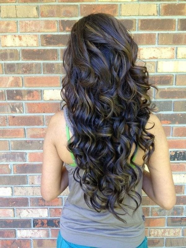 View Of Long Curly Hairstyle For Girls With Regard To Long Hairstyles From Behind (Gallery 15 of 15)