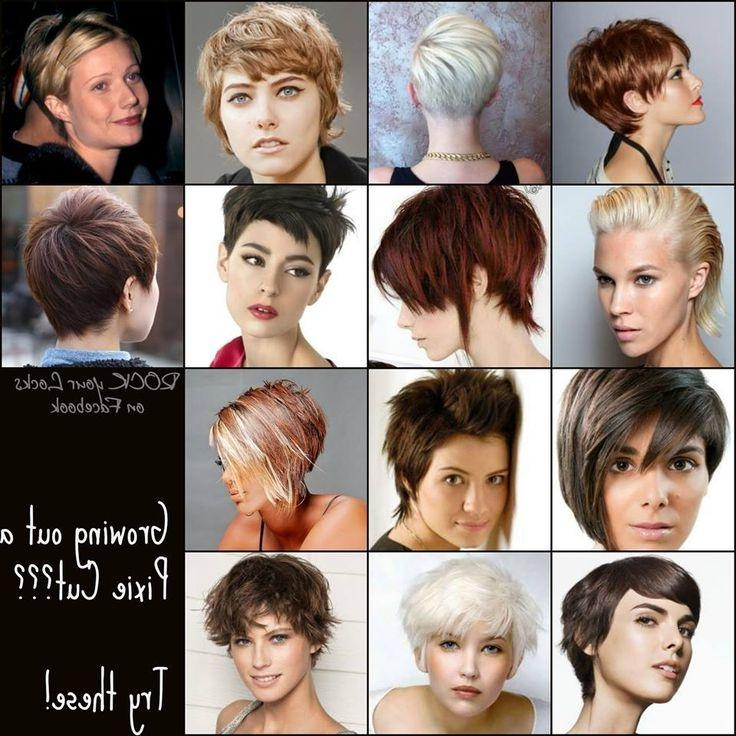 124 Best Growing Out A Pixie Images On Pinterest | Make Up, Bobs In Short Hairstyles For Growing Out A Pixie Cut (View 3 of 20)