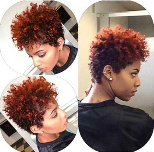 20 Good Short Haircuts For Naturally Curly Hair | Short Hairstyles Throughout Short Haircuts For Naturally Curly Hair (View 18 of 20)