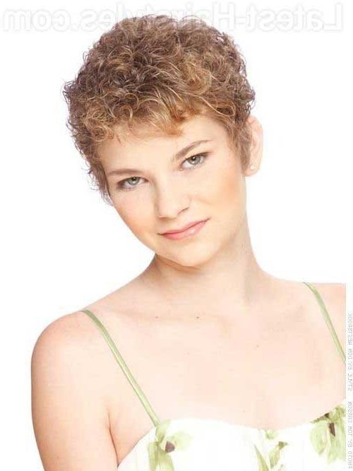 20 Very Short Curly Hairstyles | Short Hairstyles 2016 – 2017 Within Short Hairstyles For Very Curly Hair (View 7 of 20)