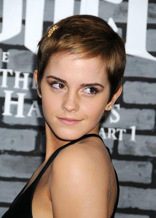 42 Best Pixie Images On Pinterest | Artists, Beauty Tips And Celebrity Intended For Easy Maintenance Short Haircuts (View 4 of 20)
