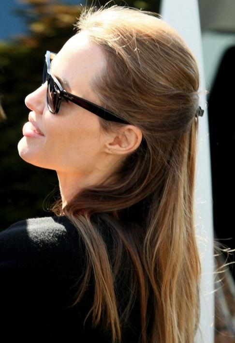 Angelina Jolie Long Hairstyles: 2014 Straight Hairstyle For Inside Angelina Jolie Short Hairstyles (View 7 of 20)