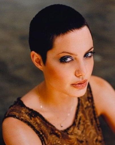 Best 25+ Angelina Jolie Short Hair Ideas On Pinterest | Angelina Throughout Angelina Jolie Short Hairstyles (View 12 of 20)