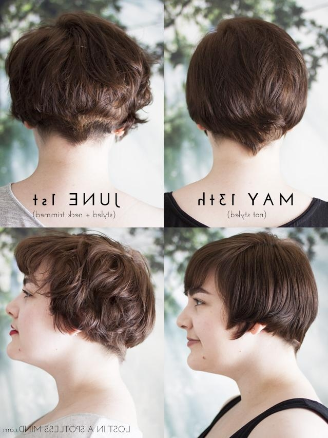 Growing Out A Pixie Cut: A Plan | Lost In A Spotless Mind Intended For Short Hairstyles For Growing Out A Pixie Cut (View 16 of 20)