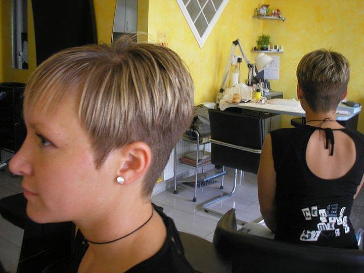 Hairxstatic: Crops & Pixies [Gallery 9 Of 9] Pertaining To Short Hairstyles Cut Around The Ears (View 10 of 20)