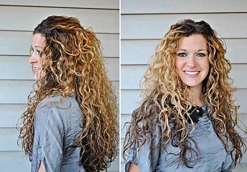 Most Recent Long Haircuts For Thick Curly Hair Within Haircuts For Long Thick Frizzy Hair – Find Hairstyle (View 9 of 15)