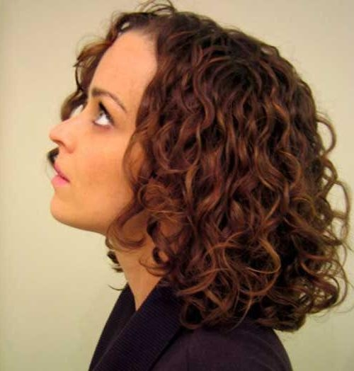 Most Recently Released Long Haircuts For Thick Curly Hair In Best 25+ Thick Curly Haircuts Ideas On Pinterest | Curly Medium (View 10 of 15)
