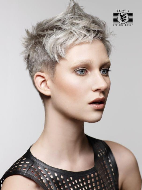 Pictures Of Short Hairstyles Woman | Hairjos Inside Short Haircuts With Gray Hair (View 17 of 20)