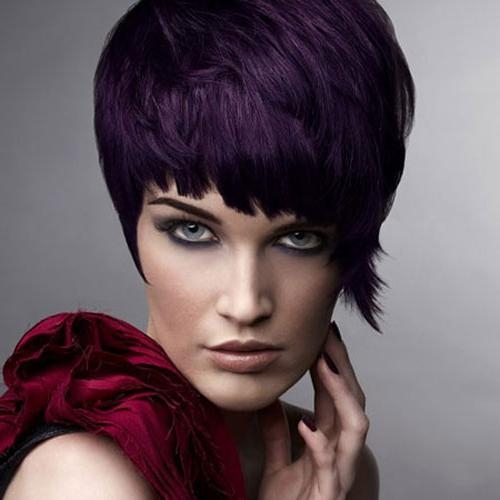 Featured Photo of Purple And Black Short Hairstyles