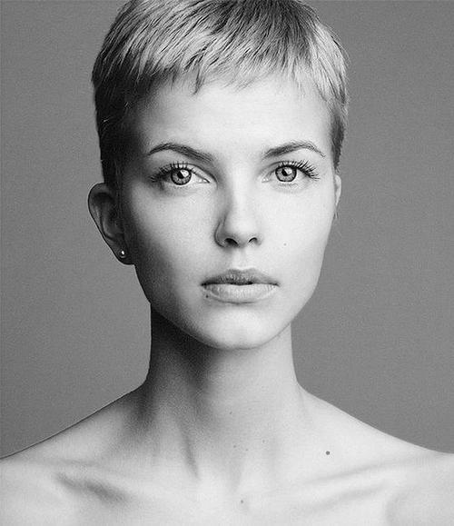 Short Cropped Haircuts For Women | Short Hairstyles 2016 – 2017 Inside Cropped Short Hairstyles (View 11 of 20)