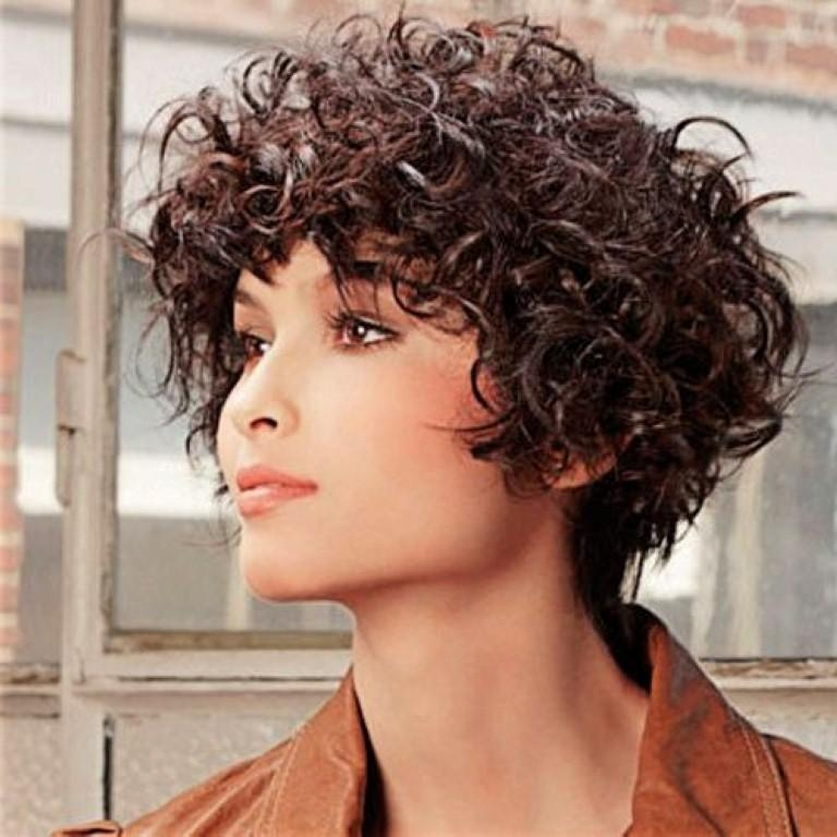 Short Curly Hairstyles For Round Faces – 2017 Creative Hairstyle For Short Haircuts For Curly Hair And Round Face (View 14 of 20)