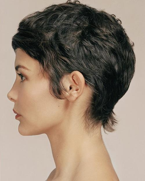Short Hair 2013 Trend | Short Hairstyles 2016 – 2017 | Most Regarding Audrey Tautou Short Haircuts (View 19 of 20)