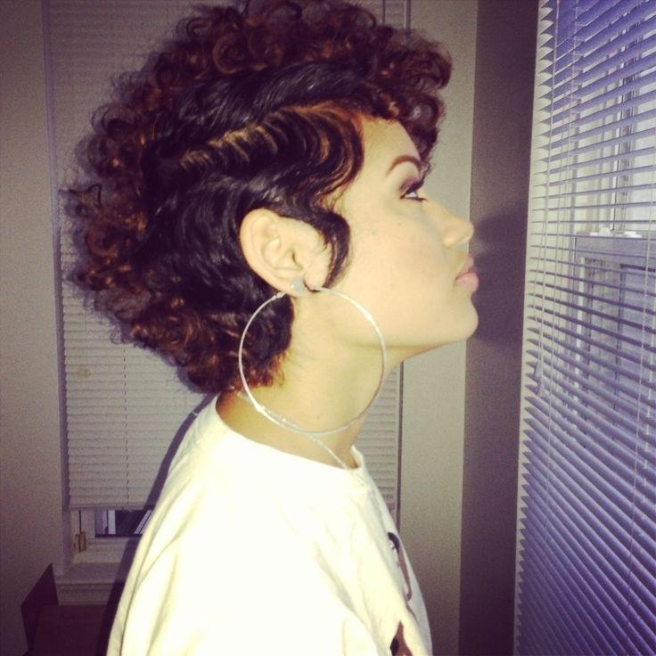 Short Haircut For Curly Hair Hairstyles For Black Women Throughout Short Haircuts For Curly Black Hair (View 15 of 20)