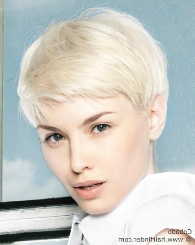 Short Haircut With Soft Lines For Platinum Blonde Hair Inside Platinum Blonde Short Hairstyles (View 13 of 20)